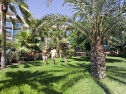 Hotel Faro Jandia giardino